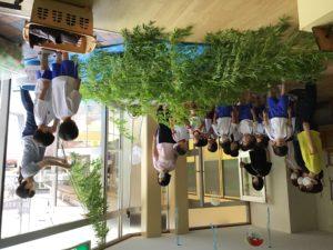 画像:7月6日(月) 七夕の笹.幼稚園に到着☆*