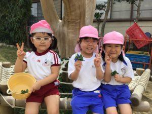画像:9月14日(月)年少組のお外遊び