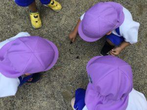 画像:8月4日(水)サマースクールの様子